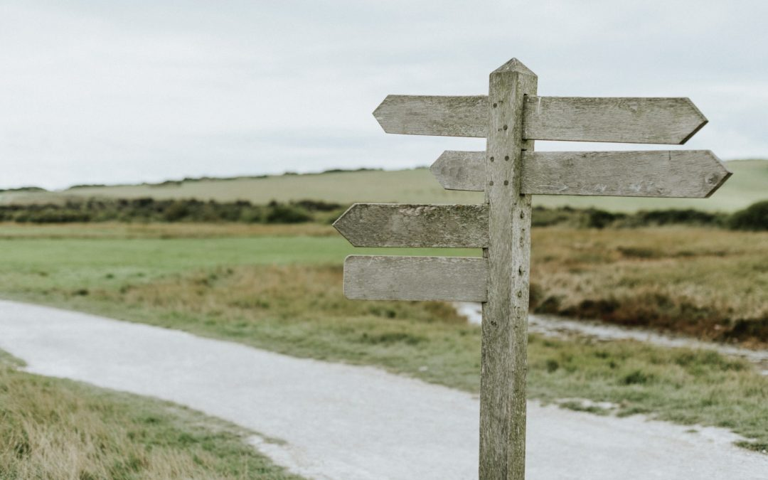 Focus, Decision-Making, and Choosing The Right Path