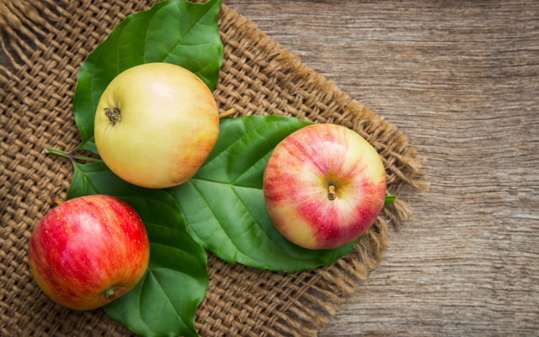 ASK SARAH #7: Parenting And Healthier Habits (The Apple Philosophy)
